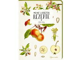 Meine liebsten Rezepte - Einschreibbuch  Äpfel